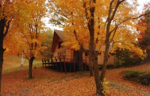 Exterior Cabin 5 in fall